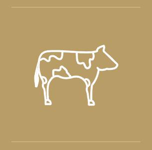 hilal-icon